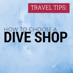 FEATURED - How To Choose A Dive Shop